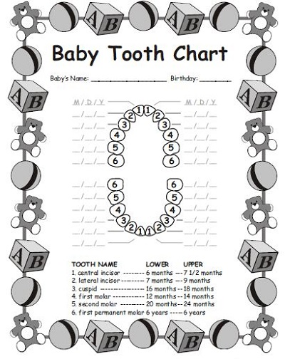 dental charting forms download free