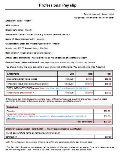 Professional Payslip Template